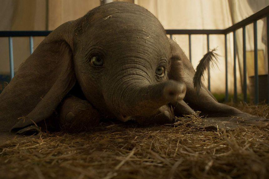 L'éléphanteau Dumbo découvre par hasard qu'il peut voler.... (PHOTO FOURNIE PAR DISNEY)