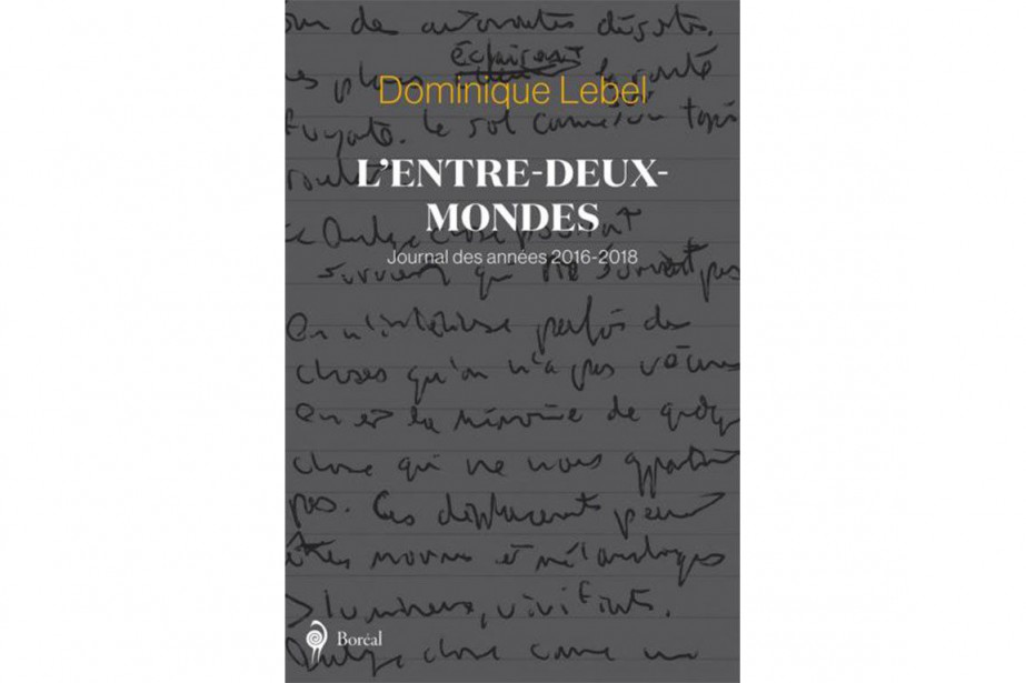L'entre-deux-mondes, de Dominique Lebel... (IMAGE FOURNIE PAR BORÉAL)