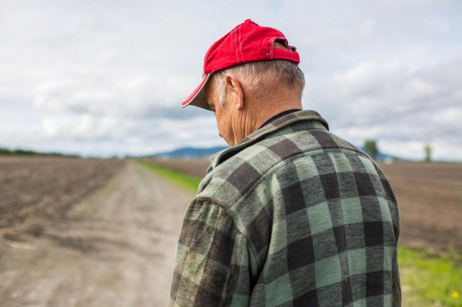 Pesticides: «Ils nous disaient que ce n'était pas dangereux»