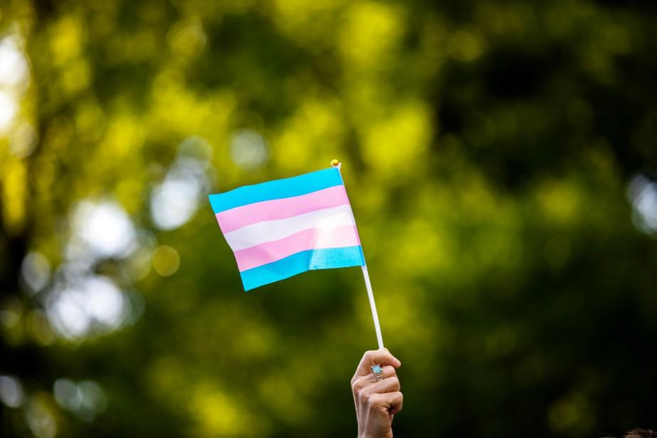 Le drapeau représentant les personnes transgenres... (Photo Demetrius Freeman, Reuters)