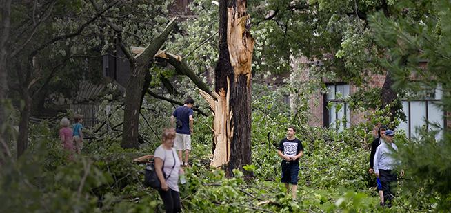 Orages violents: des dizaines de milliers de pannes et des arbres déracinés