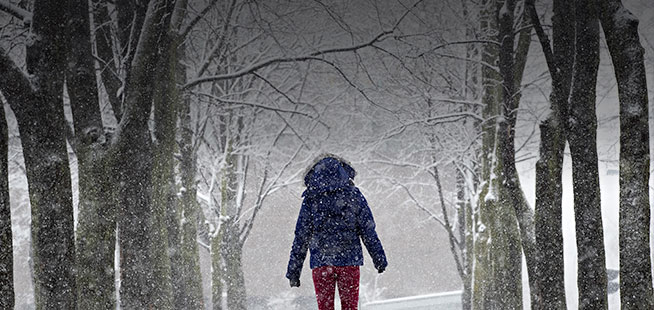 La région de Montréal sous la neige